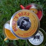 j'adore Bees // Burt's Bees
